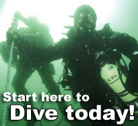 Dive today!